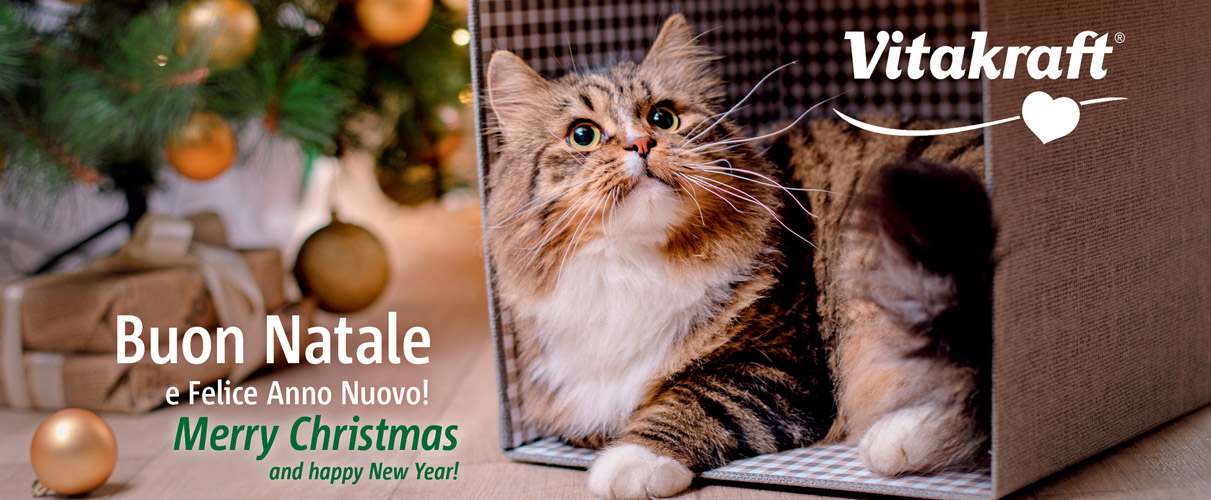 Buon-Natale-home-2