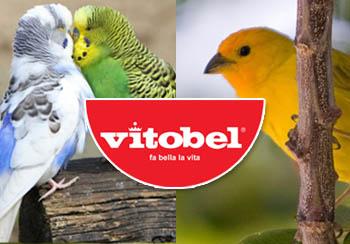 Box Vitobel per pagina uccellini