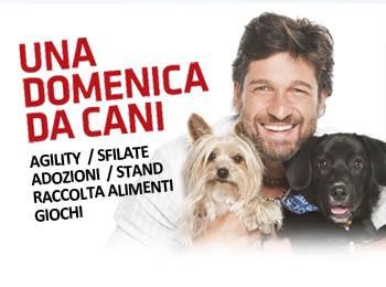 Una-domenica-da-cani-350x260