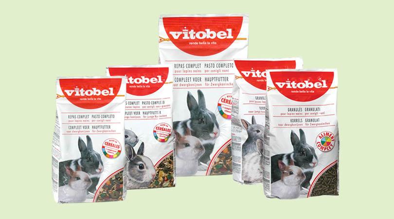 ro-vitobel-conigli