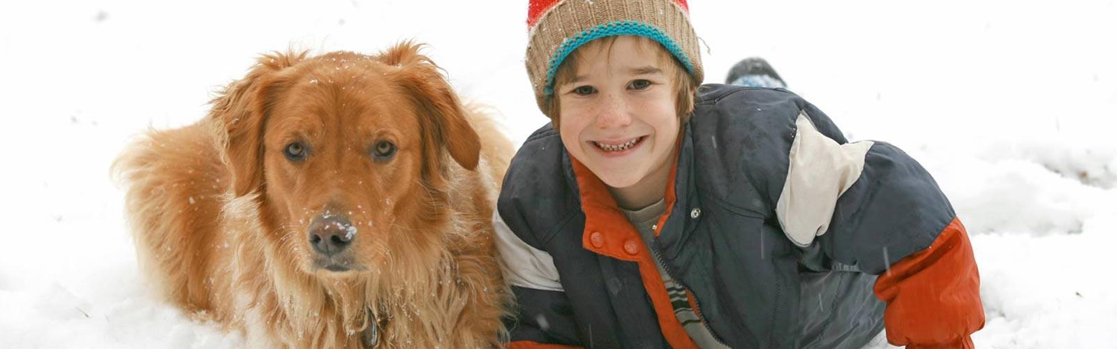 cane-e-bambino-sulla-neve