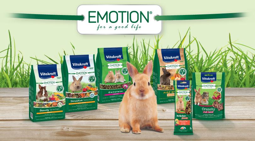 Linea-Emotion-conigli-nani