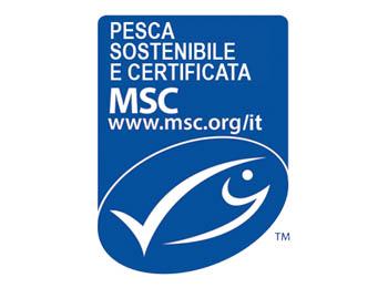 Certificazione-MSC-350x260-2