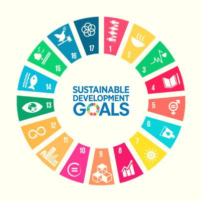 0 SDG-Blog-post-2-26.09